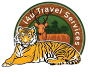 i4u Travel Services