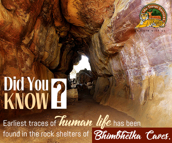 Bhimbekta Caves
