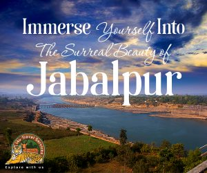 Jabalpur tourist package