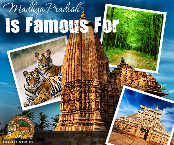 Madhya Pradesh Travel Packages