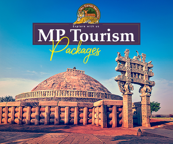 madhya pradesh travel package
