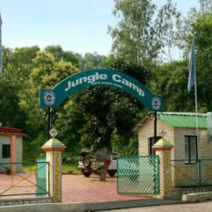 Jungle Camp, Madla