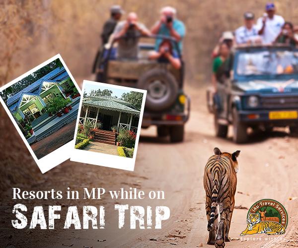 resort in Kanha National Park