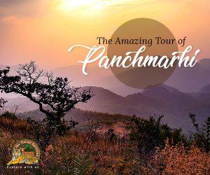Amazing Pachmarhi Tour