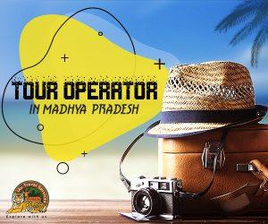 Tour Operator in Madhya Pradesh