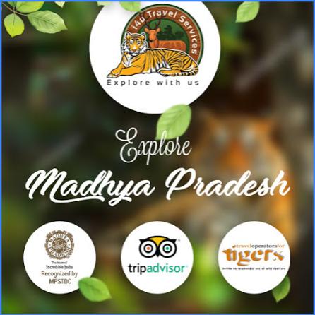 Explore Madhya Pradesh