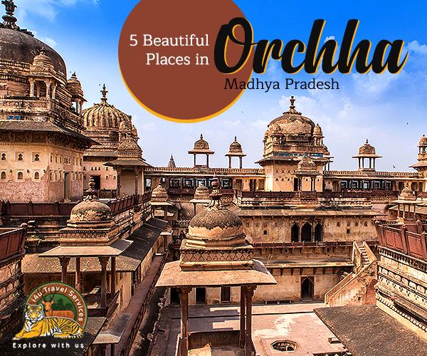 Orchha tour