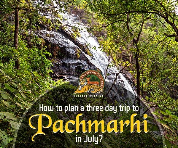 mp tour plan a trip july
