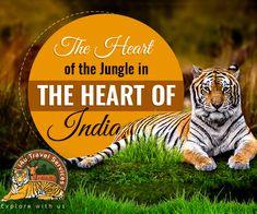 Herat of India