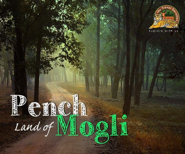 pench 2